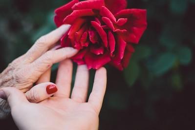 Najpiękniejsze WIERSZE i piosenki na Dzień Babci! ŻYCZENIA i rymowanki