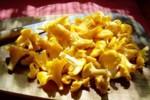 JAK zrobić KURKI: Pyszny przepis na naleśniki i quiche z kurkami!